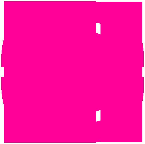 Wamp Server Logo